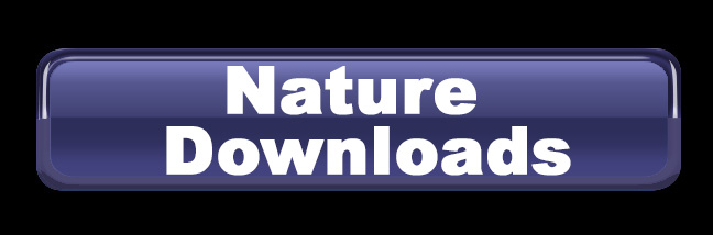 Nature Downloads