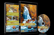relaxing_nature_dvd_fall_cascades