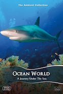 ocean_world_an_underwater_relacation_experience