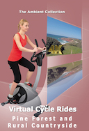 4_k_virtual_cycle_pine_forest_and_rural_countryside