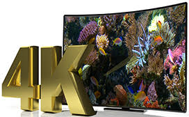 4K | Coral Tranquility 2016 in 4K resolution