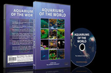 Tropical and Freshwater Fishes and Marine Life from around the Blue Oceans