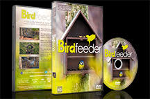 Birdfeeder in HD