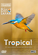 bird_safari_dvd_tropical_birds_and_many_wildlife_with_relaxing_music_or_bird sounds