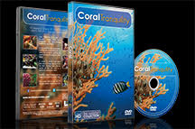 Underwater DVD - Coral Tranquility 2016
