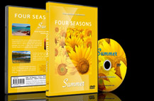 Scenic Summer Landscapes Scenery with Flowers and Sunny Beaches
