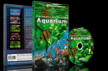 Fish Tanks with Fishes from the Rivers and Lakes and Seas