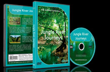 A Virtual Boat Journey in a Beautiful Rainforest Landscapes Scenery