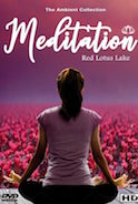 meditation-with-nature-red-lotus-lake