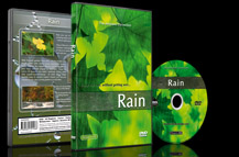 Rainfall in Woodlands and Tropical Landscapes with Sounds of the Rain