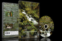 Rainforest Creeks DVD