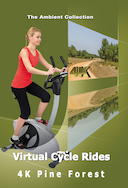 4_k_virtual_cycle_rides_pine_forest_with_bird_and_nature_sounds