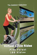 virtual_cycle_rides_180_degree_vision_coastal_pine_forest