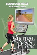 virtual_walk_sugar_cane_fields_with_tempo_levels