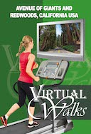 virtual_walks_avenue_of_giants_and_redwoods_california_usa