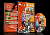 Virtual Walks - A Day At The Forest
