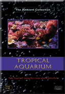 Aquariums from Fish from the Tropics