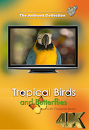 4_k_tropical_birds_and_butterflies