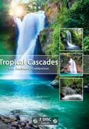 tropical_cascades_with_sounds_of_waterfalls_jungle_tropical_birds