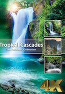 tropical_cascades_4k