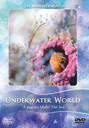 underwater_world_with_small_creatures_filmed_macro_cinema_lenses