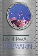 underwater_submarine_coral_reef_view_with_scuba_underwater_and_submarine_sounds
